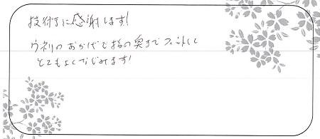 20071105木目金の結婚指輪_G004.jpg