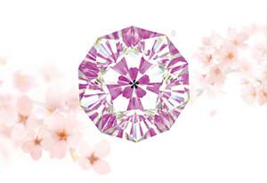 120608さくらダイヤモンド01.jpg