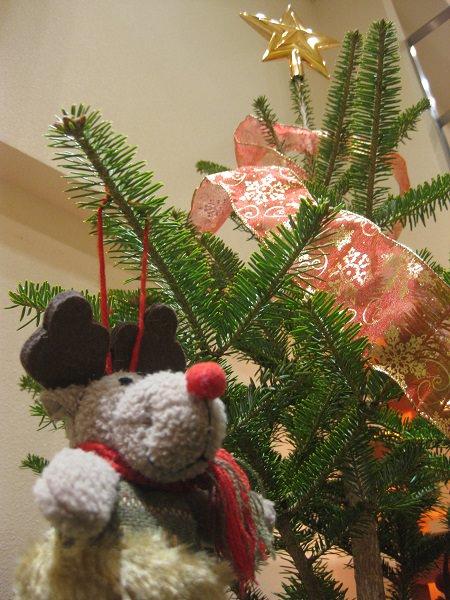 銀座店クリスマス3.JPG