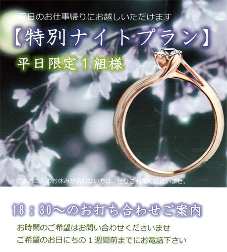 blog用ナイトプラン.jpg