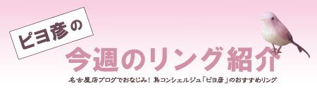 杢目金屋名古屋店 おすすめ.jpg