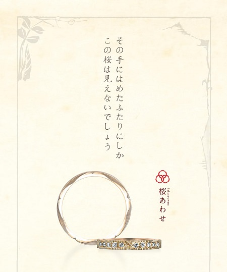 Sawase_PC.jpg