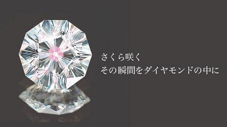 16101401木目金の婚約指輪_S002.JPG