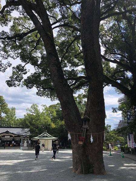2019.10.11_熊本県_008.jpg