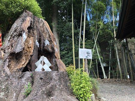 2019.10.8_茨城県_常盤神社_007.JPG