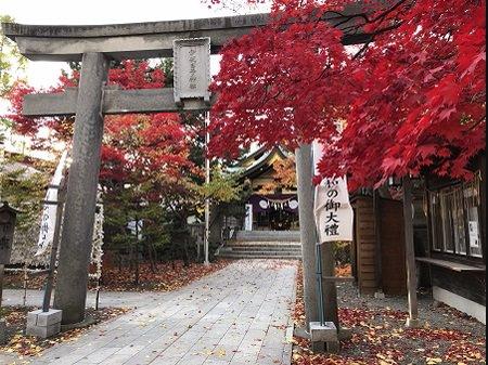 2019.11.05_北海道_弥彦神社_003.jpg