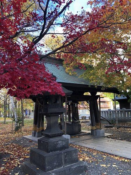 2019.11.05_北海道_弥彦神社_004.jpg