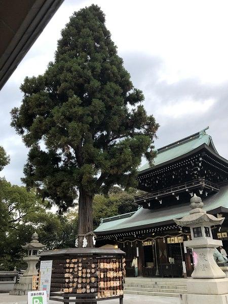 2019.11.14_山口県_遠石神社_004.jpg